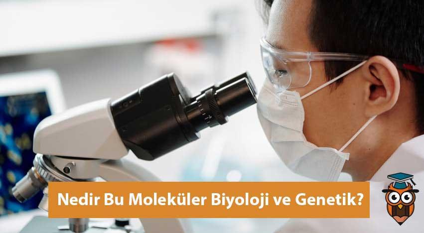 Moleküler Biyoloji ve Genetik Nedir?